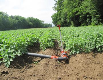 Podukrep 4.1: Podpora za naložbe v kmetijska gospo...